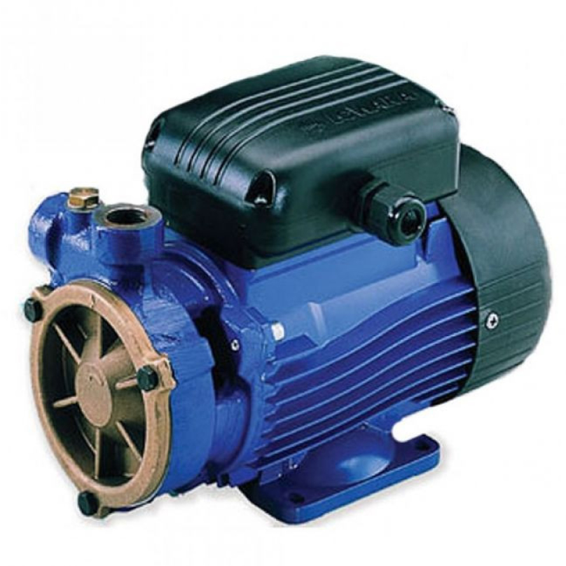 Lowara P Series Pumps