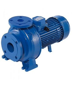Ebara 3D 40-125/2,2 M Centrifugal Pump - 230v - Single Phase - 700 Ltr/min