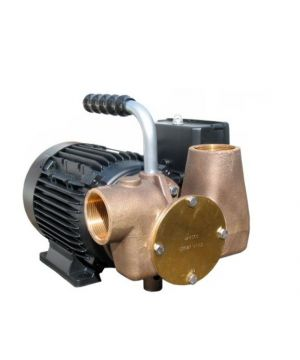 Jabsco 53081-2003-230 Utility Pump