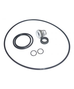 Lowara KL01AFN Seal Kit - For 10HM Pumps